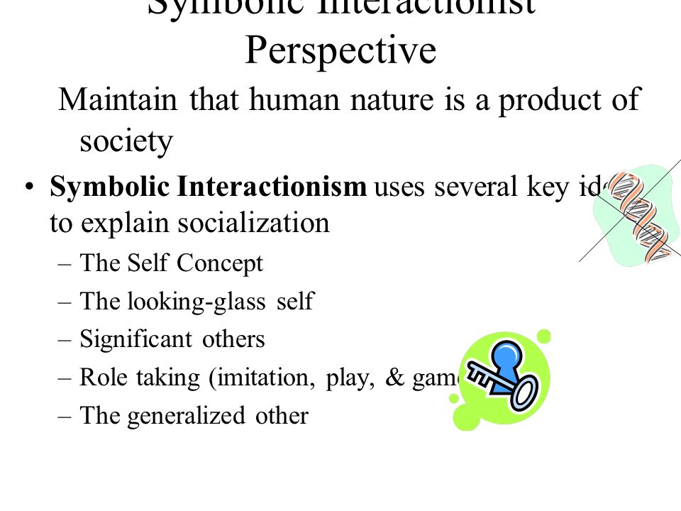 Socialization Perspectives Ppt Download