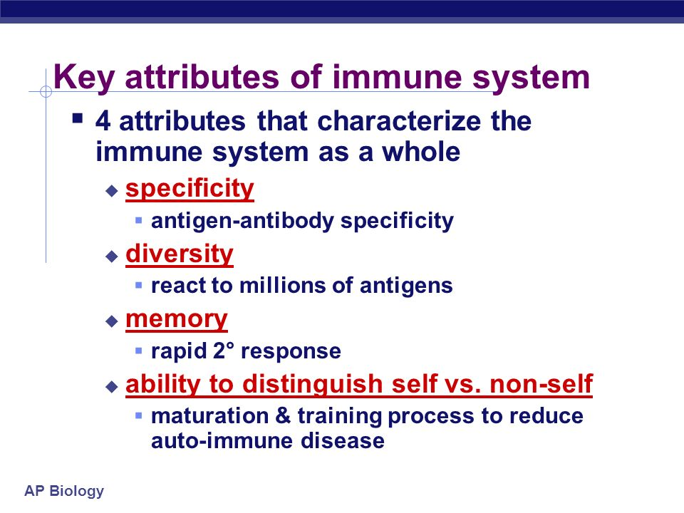 Key attributes of immune system