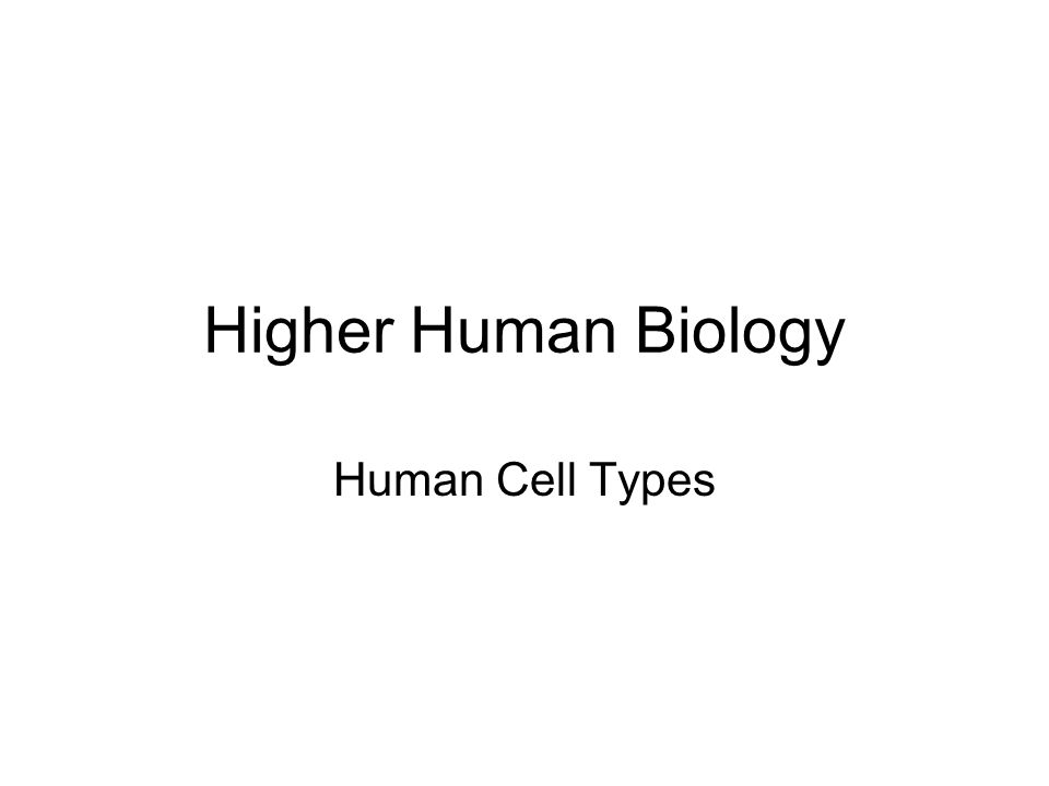 Higher Human Biology Human Cell Types