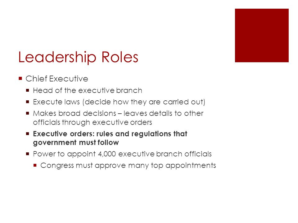 Leadership Roles Chief Executive Head of the executive branch