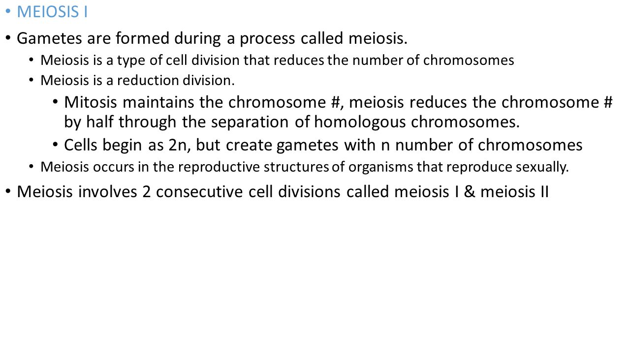 Gametes are formed during a process called meiosis.