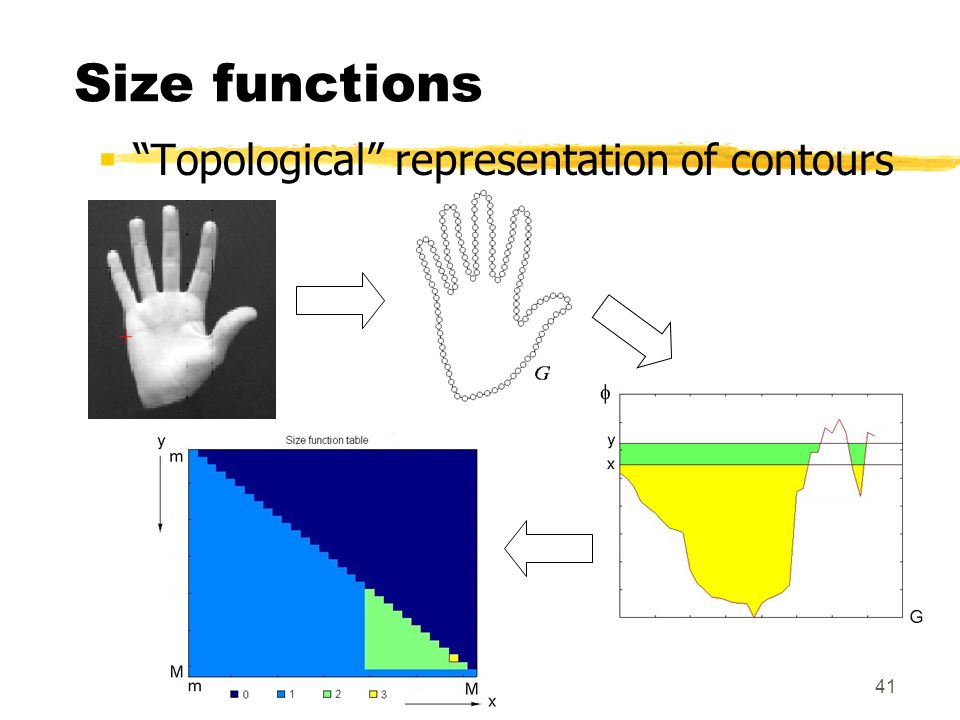 Size functions Topological representation of contours