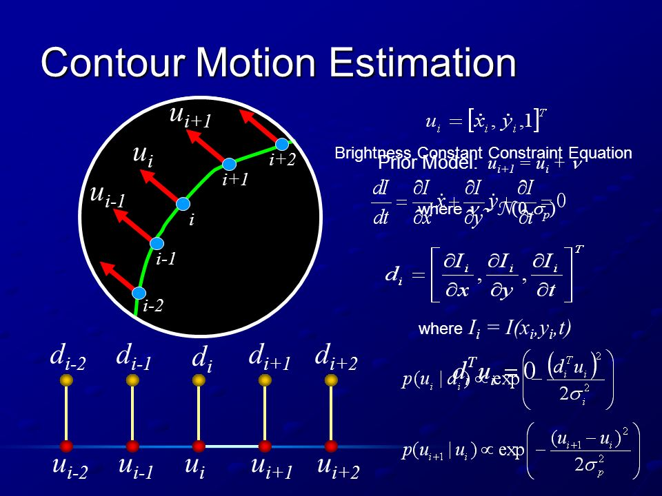 Contour Motion Estimation