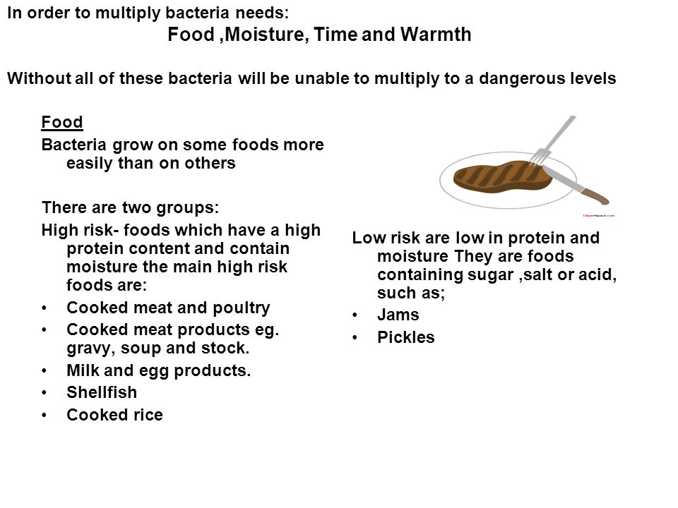 In Order To Multiply Bacteria Needs Food Moisture Time And Warmth Without All