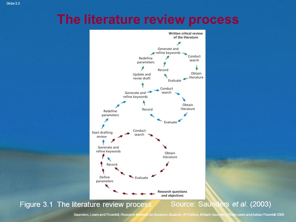 The literature review process