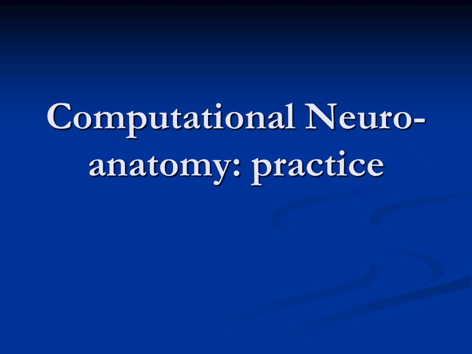 Computational Neuro-anatomy: practice