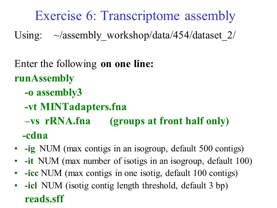 Exercise 6: Transcriptome assembly