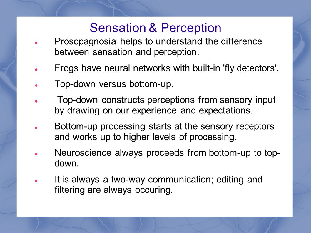 sensation versus perception