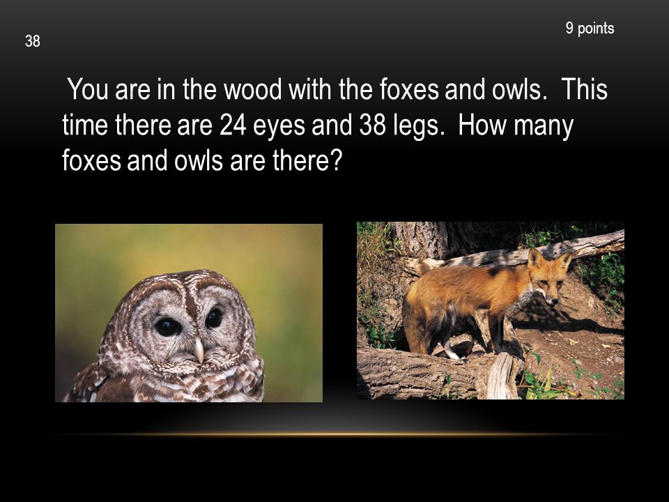 9 points 38. You are in the wood with the foxes and owls. This time there are 24 eyes and 38 legs. How many foxes and owls are there