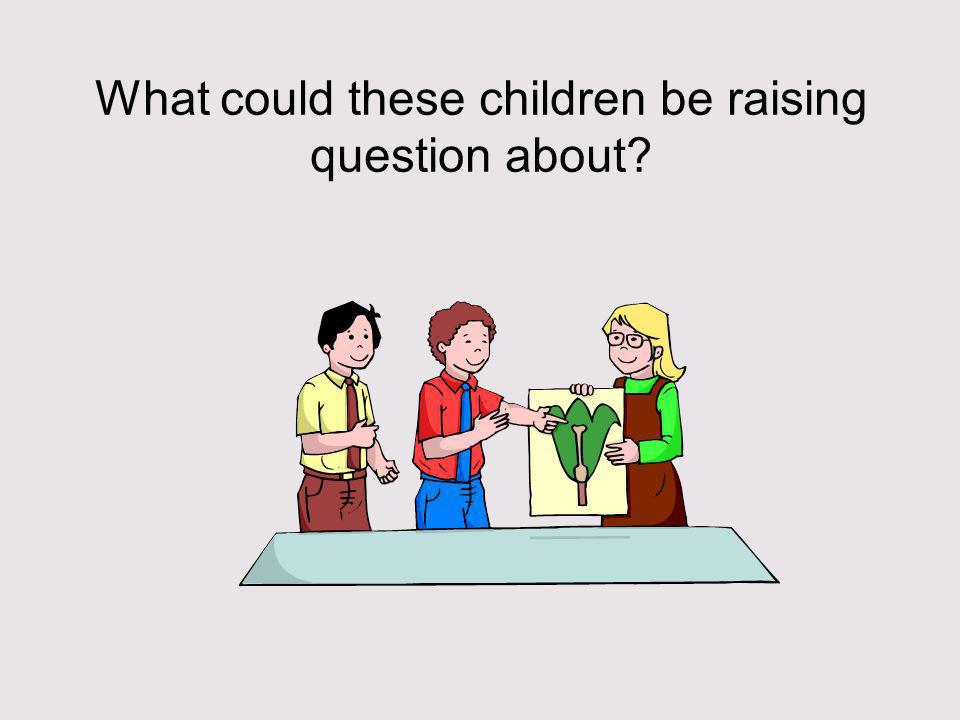 What could these children be raising question about