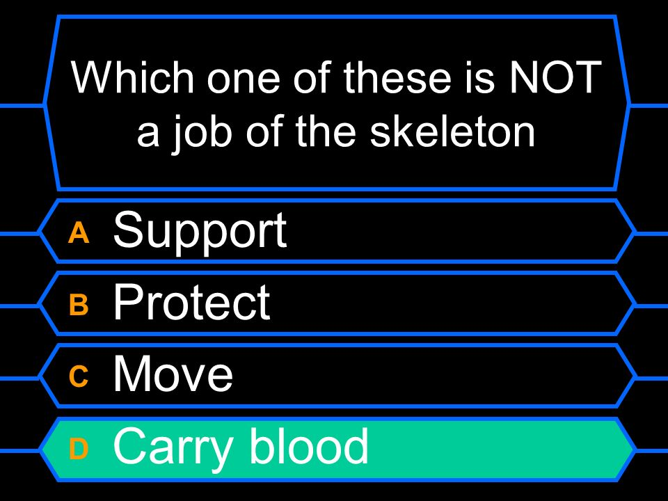 Which one of these is NOT a job of the skeleton