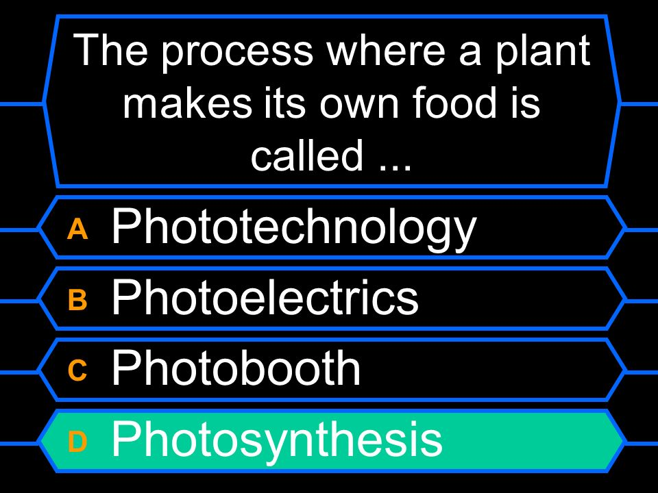 The process where a plant makes its own food is called ...