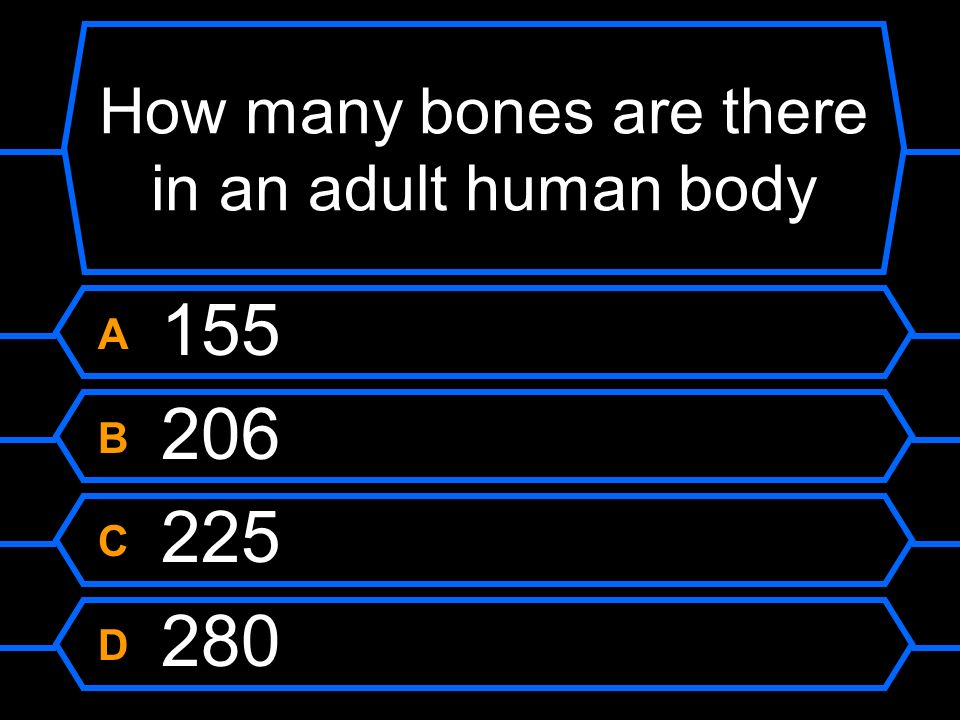 How many bones are there in an adult human body