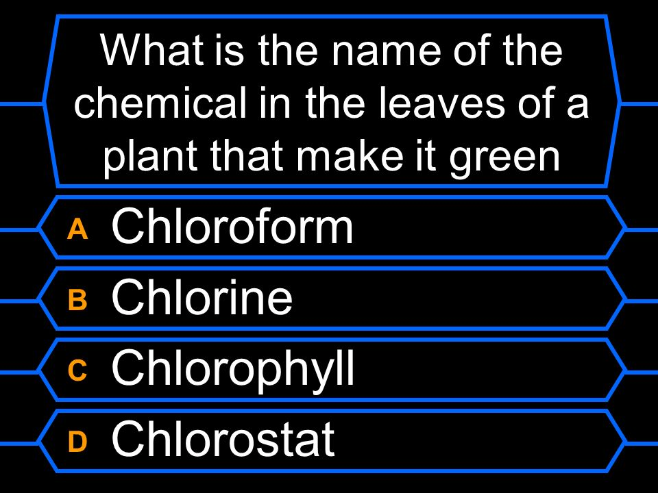 What is the name of the chemical in the leaves of a plant that make it green
