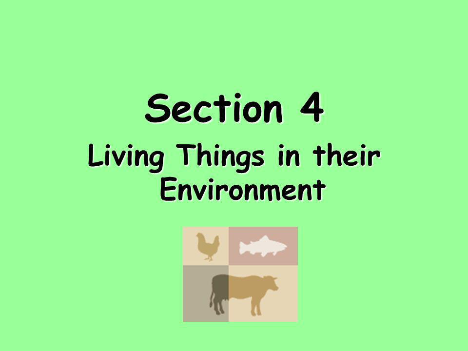 Living Things in their Environment