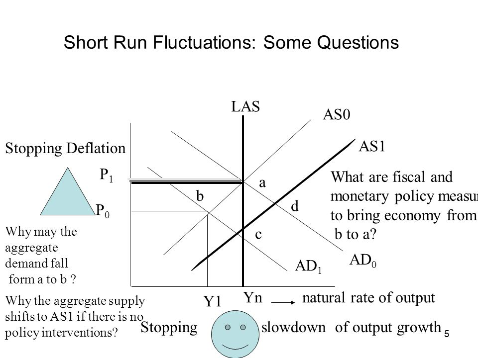 Short Run Fluctuations: Some Questions