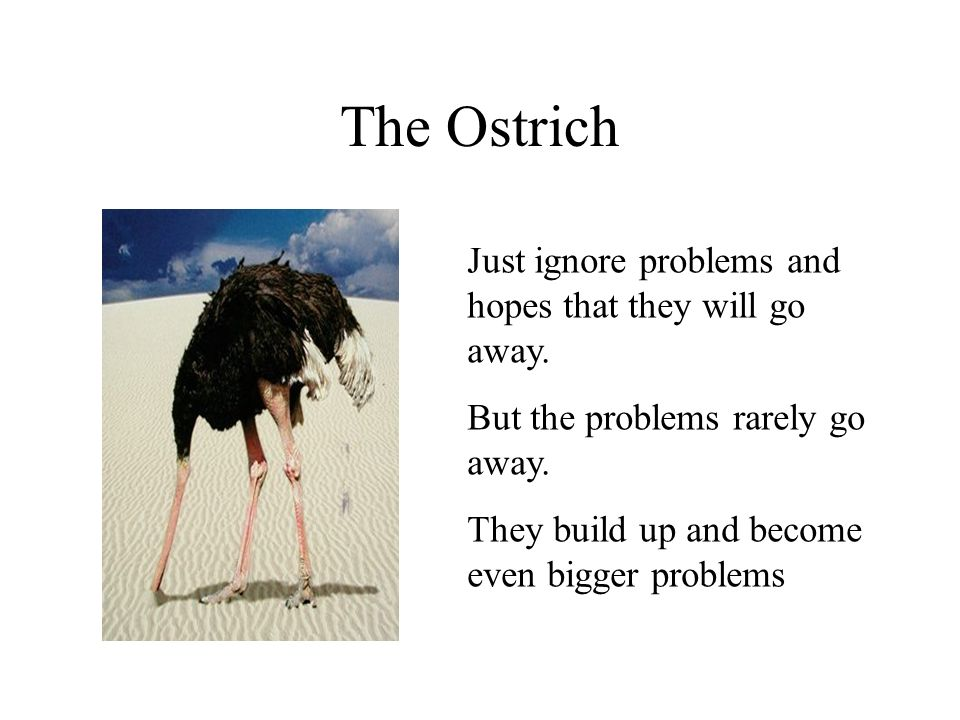 The Ostrich Just ignore problems and hopes that they will go away.