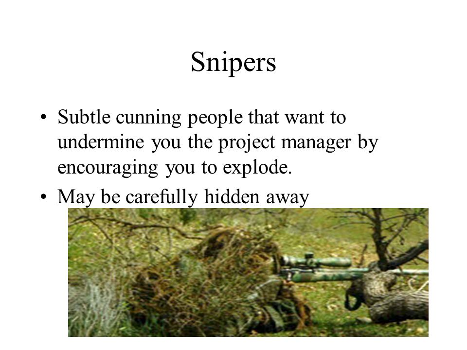 Snipers Subtle cunning people that want to undermine you the project manager by encouraging you to explode.