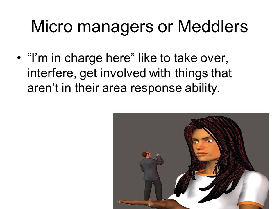 Micro managers or Meddlers