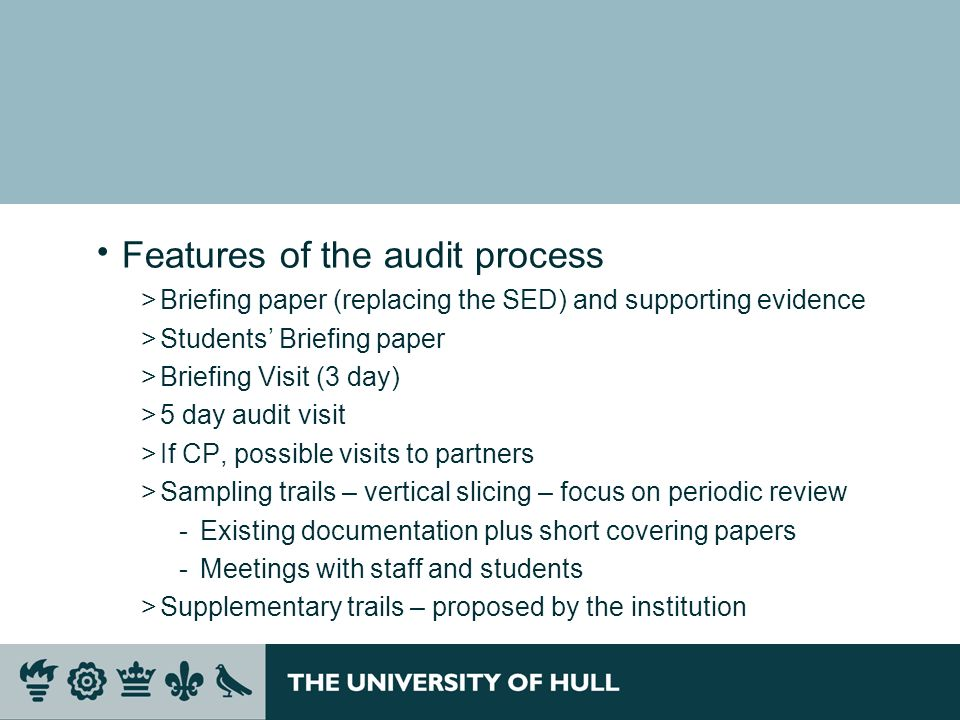 Features of the audit process