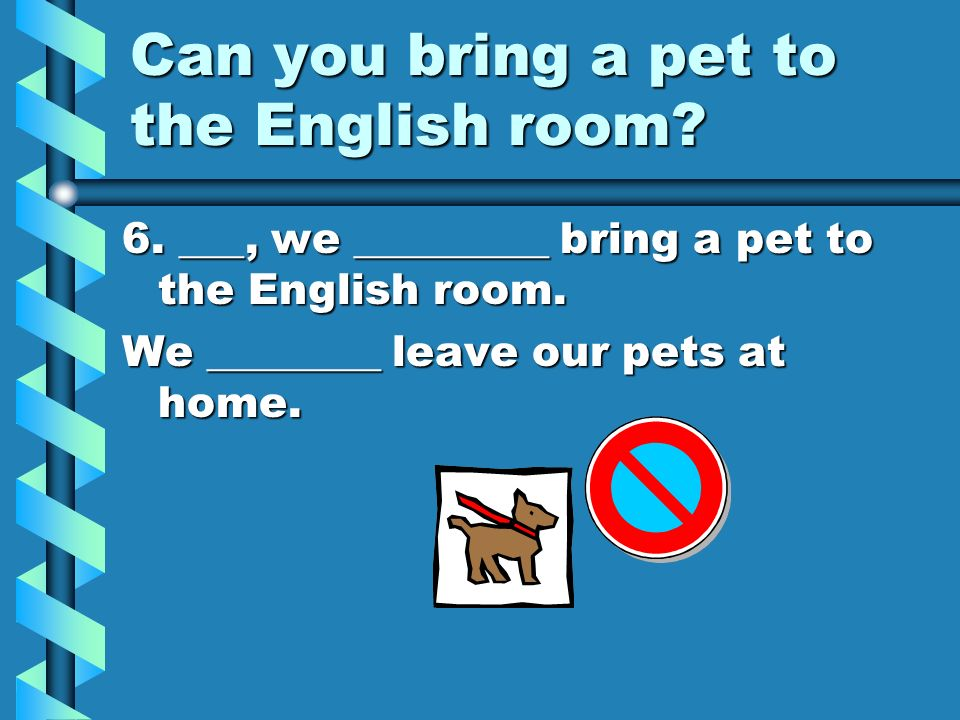 Can you bring a pet to the English room