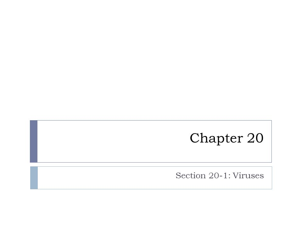 Chapter 20 Section 20-1: Viruses