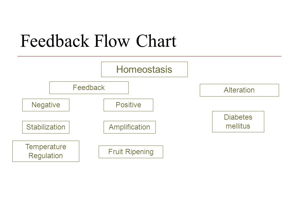 Positive And Negative Feedback Ppt Video Online Download