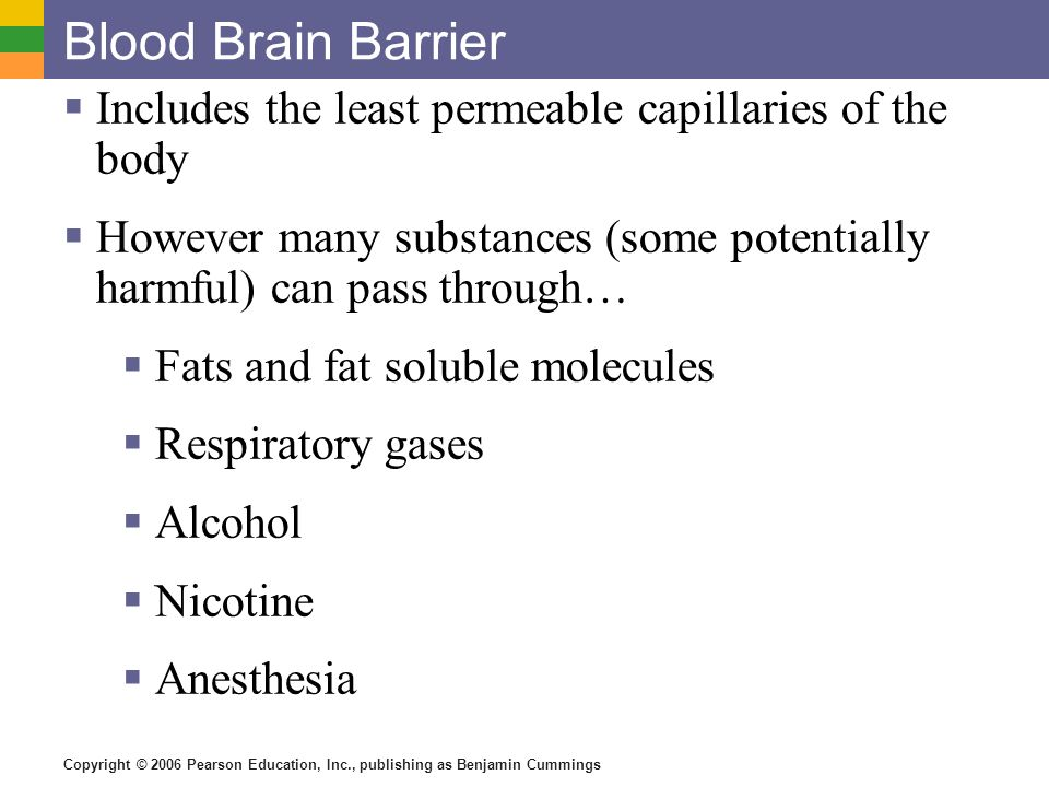 Blood Brain Barrier Includes the least permeable capillaries of the body. However many substances (some potentially harmful) can pass through…