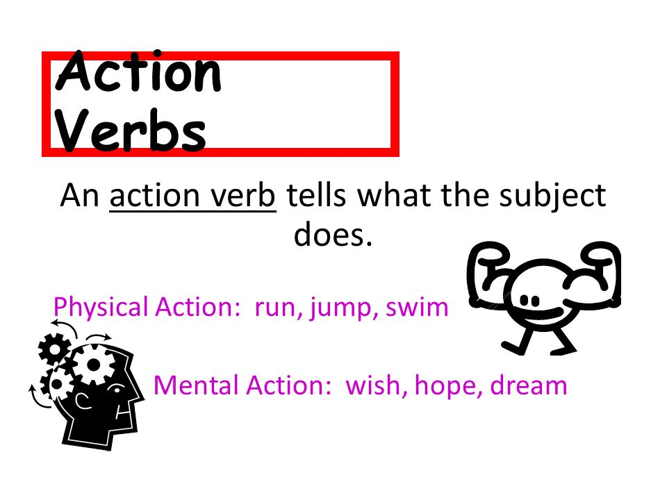 An action verb tells what the subject does.