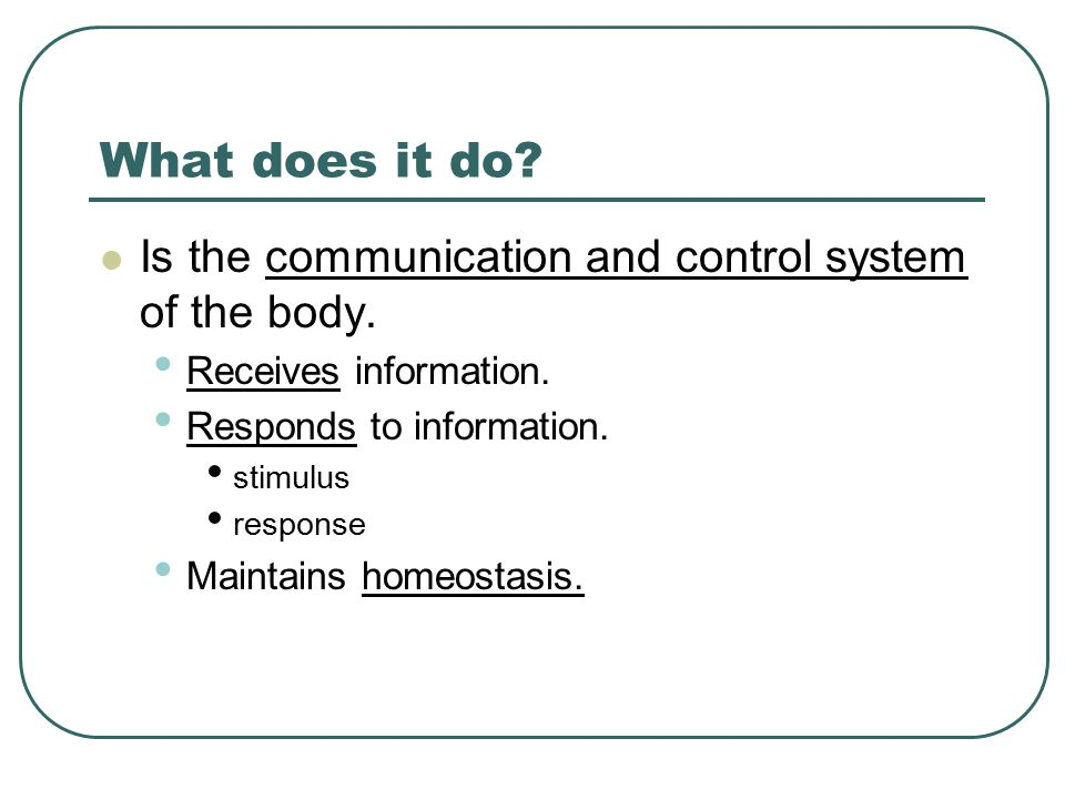 What does it do Is the communication and control system of the body.