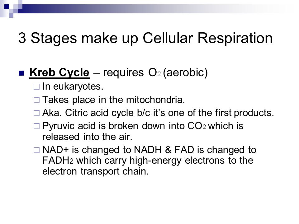 3 Stages make up Cellular Respiration
