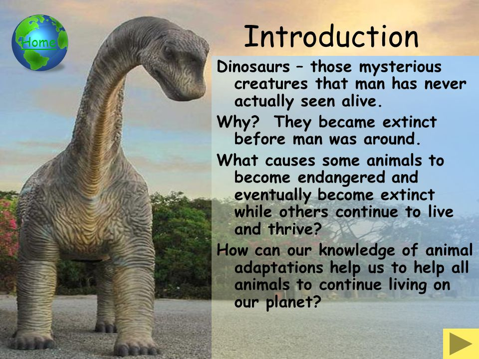 Animal Adaptations Third Grade WebQuest - ppt video online download