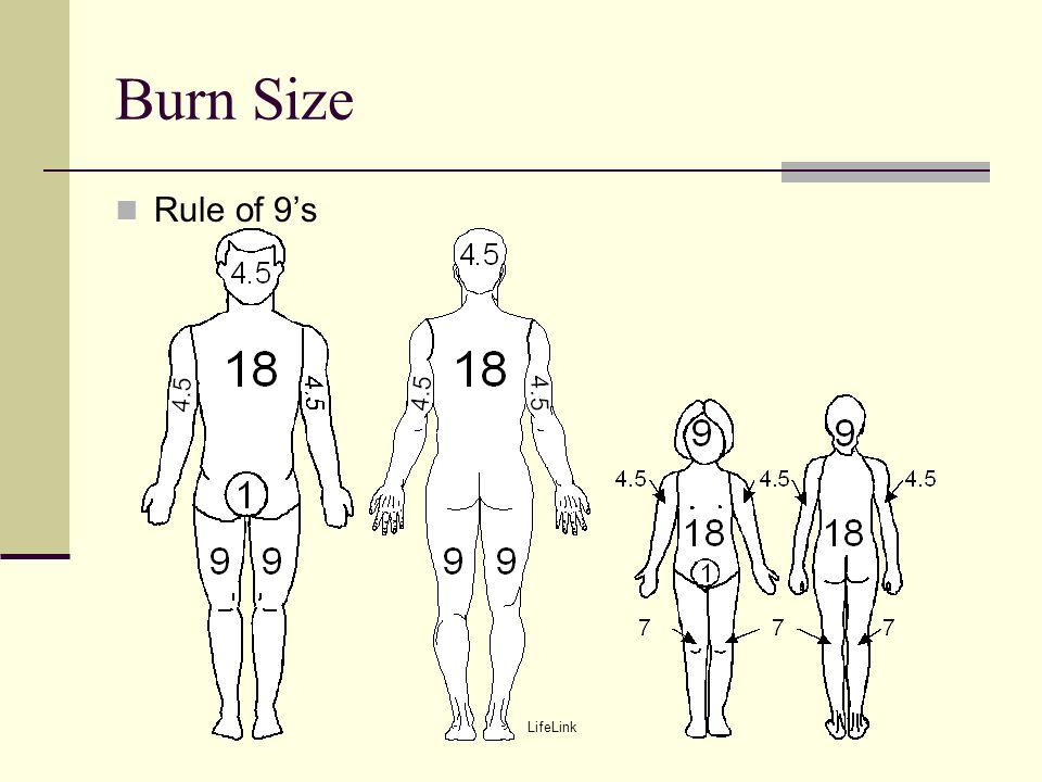 11 burn size rule of 9's lifelink