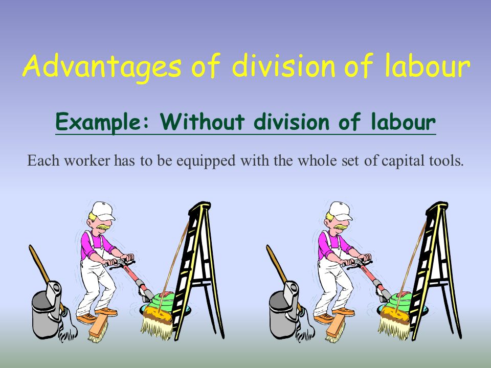 define the division of labour