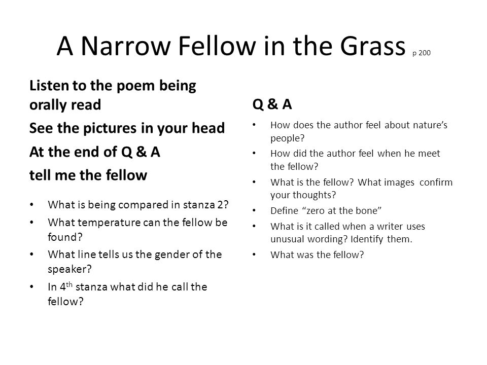a narrow fellow in the grass stanza analysis