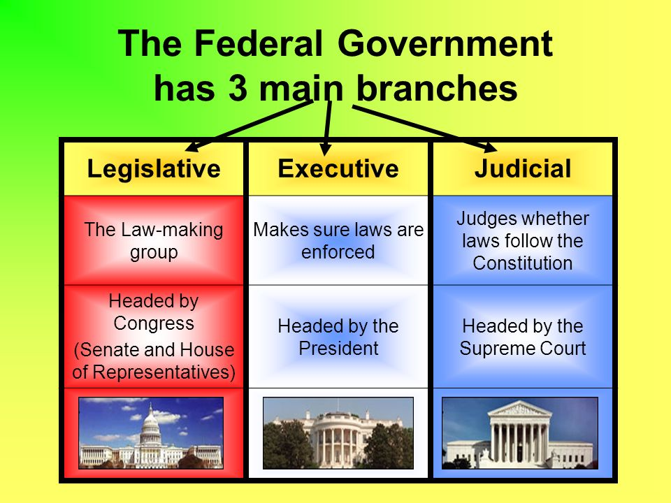 the federal government has 3 main branches