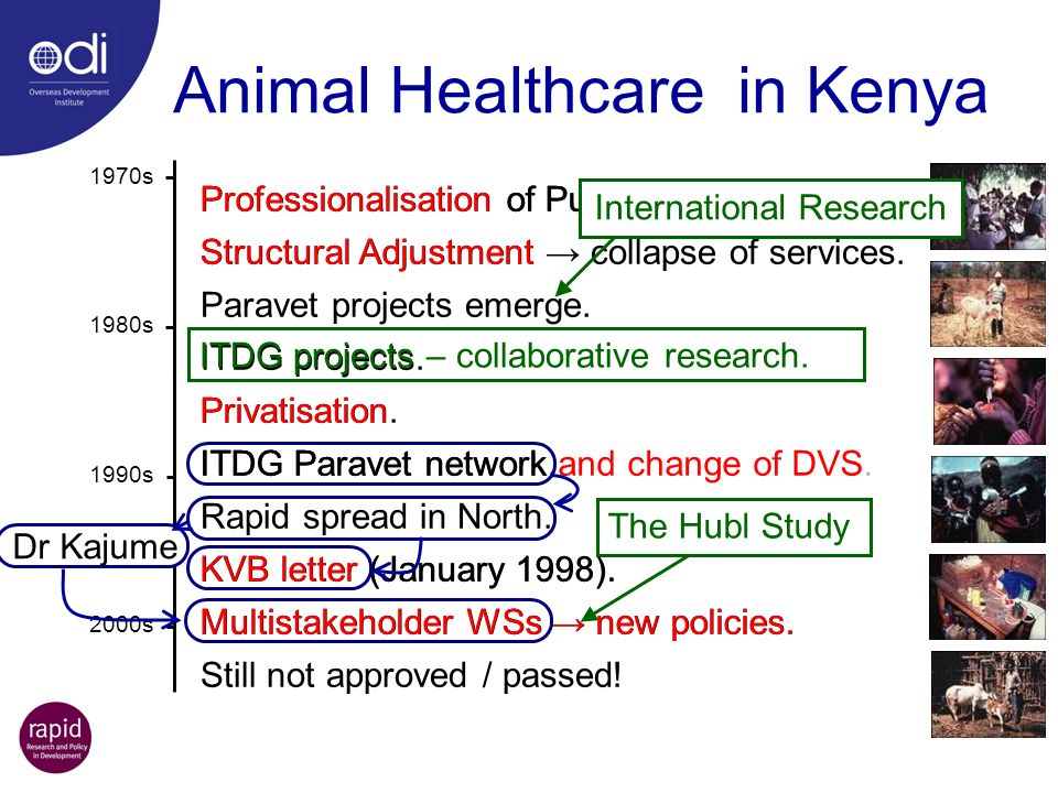 Animal Healthcare in Kenya