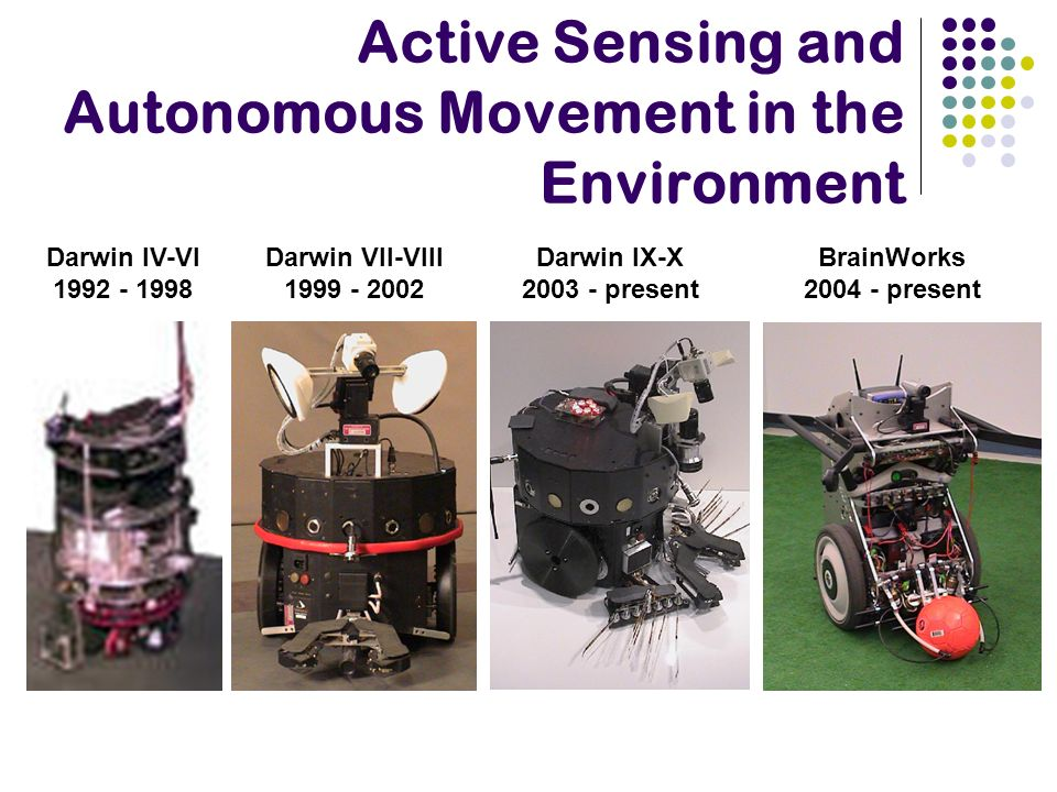 Active Sensing and Autonomous Movement in the Environment