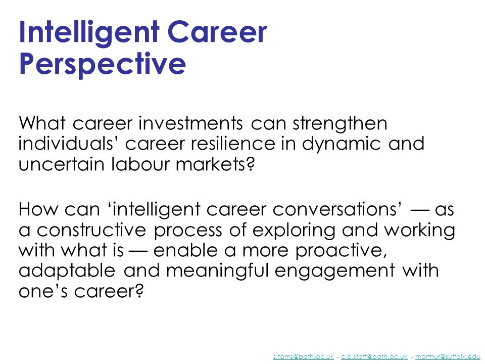 Intelligent Career Perspective
