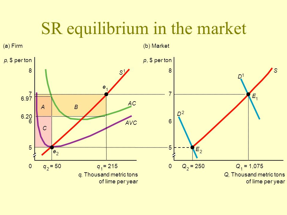 SR equilibrium in the market