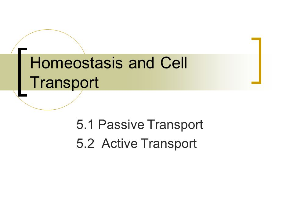 Homeostasis and Cell Transport