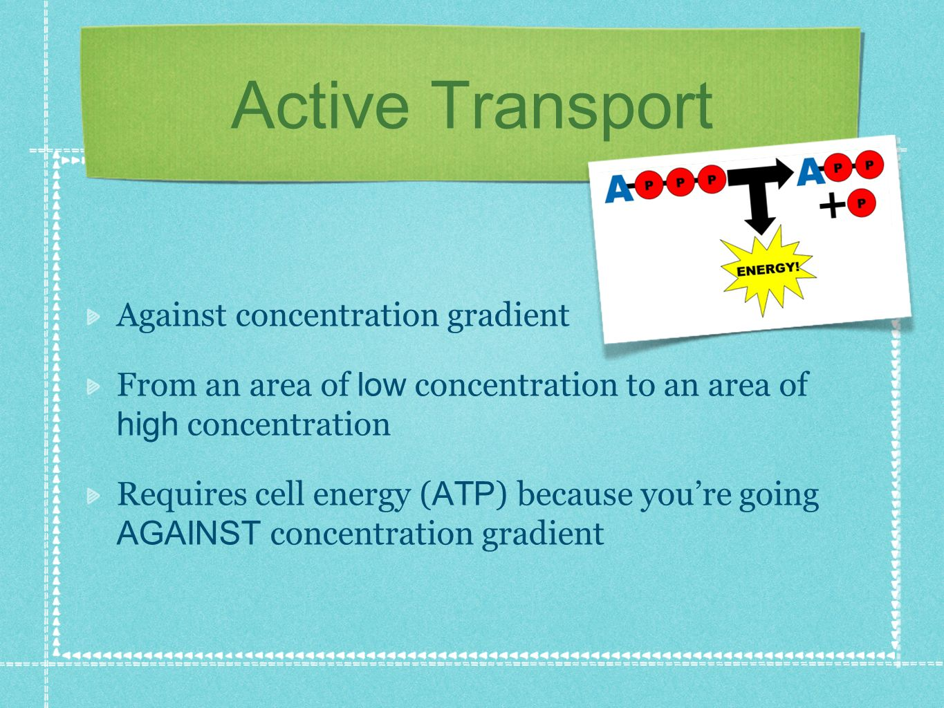 Active Transport Against concentration gradient