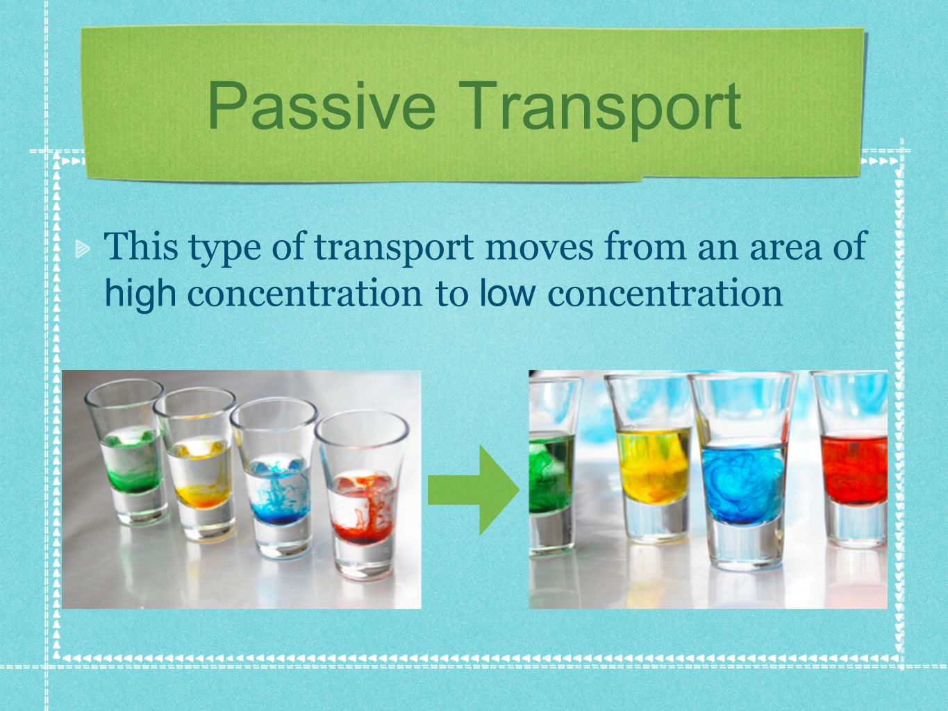 Passive Transport This type of transport moves from an area of high concentration to low concentration.