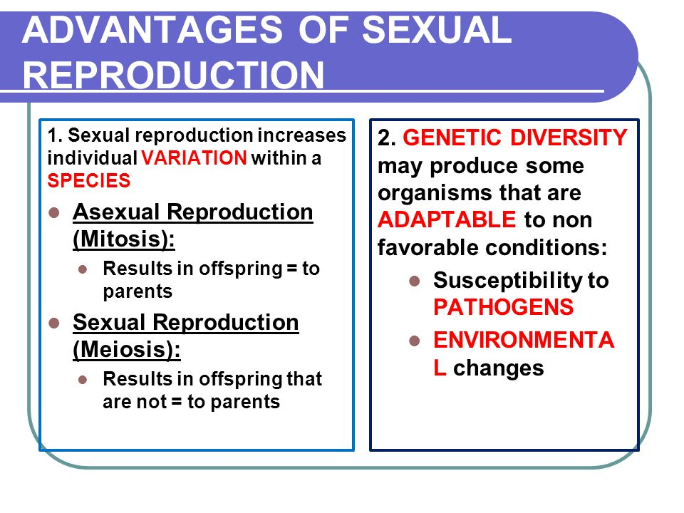 Is there genetic variation in asexual reproduction how many parents