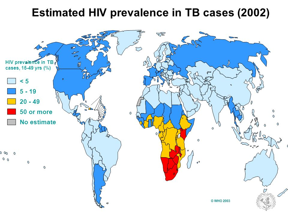 Estimated HIV prevalence in TB cases (2002)