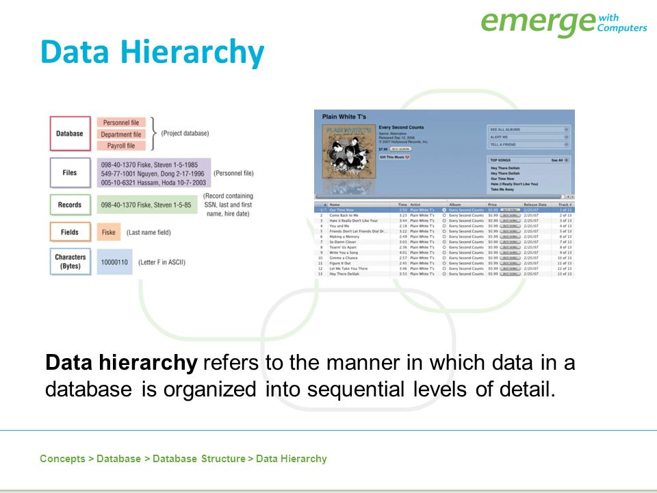 4 data hierarchy
