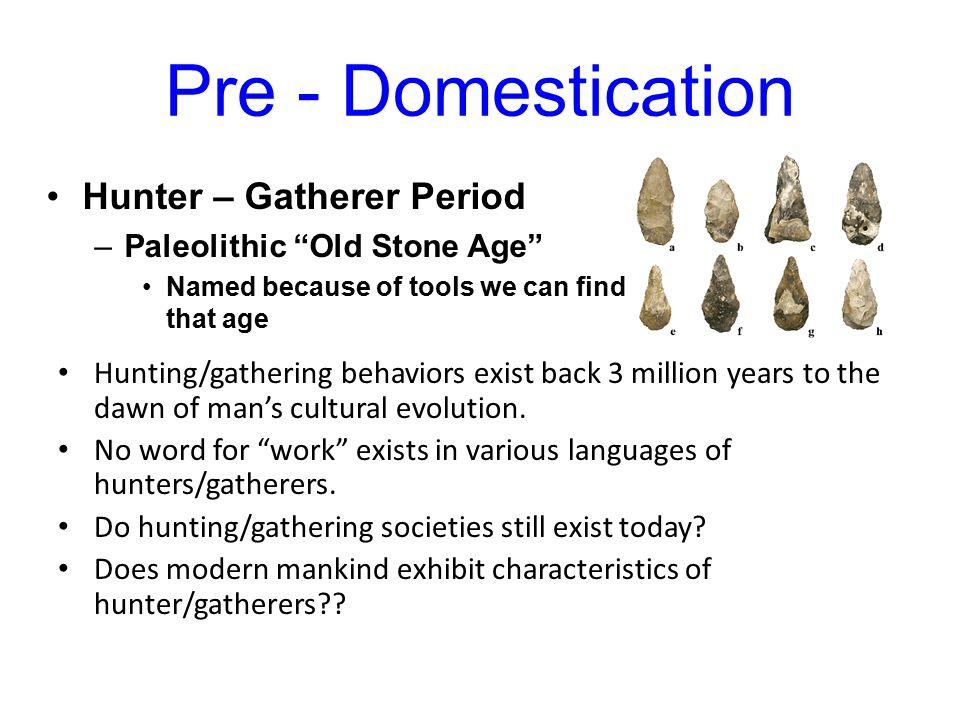 characteristics of hunting and gathering societies