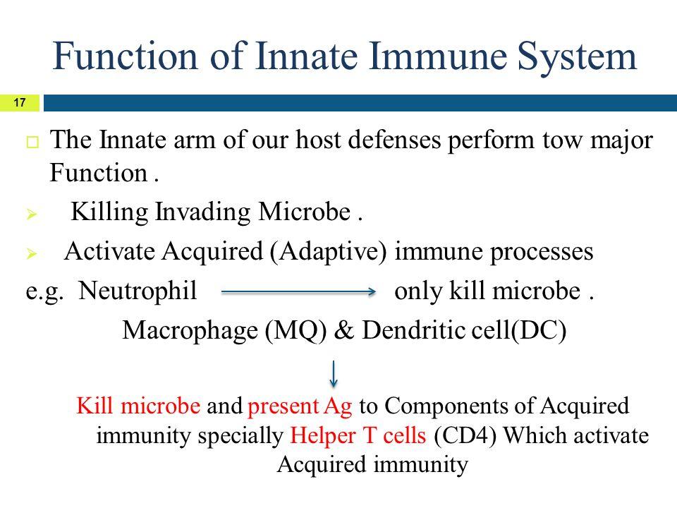 Basic Immunology Mraymansyousif Ppt Download