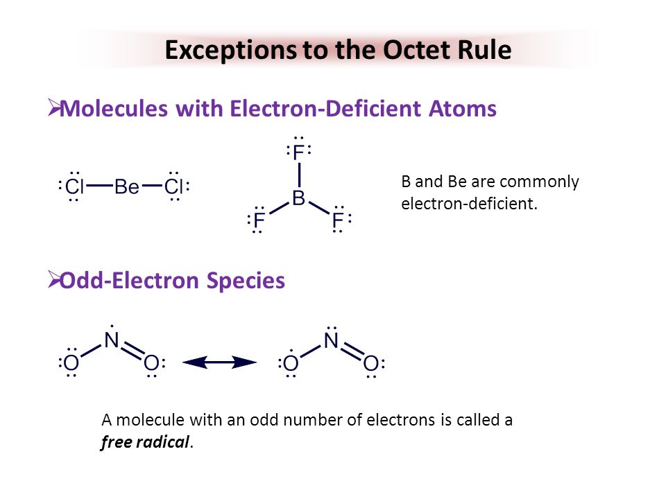 EXCEPTION TO THE OCTET RULE EPUB
