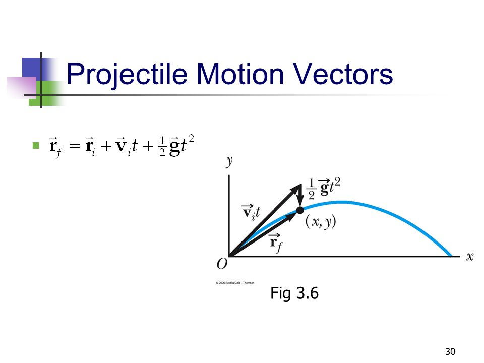 projectile motion lab conclusion